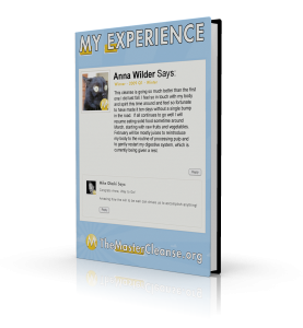 My-Experience-Covers-Anna-Wilder-3d