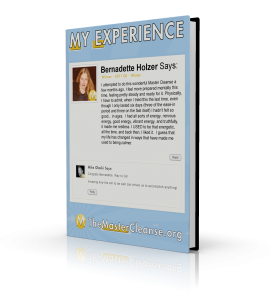 My-Experience-Covers-Bernadette-Holzer-3d