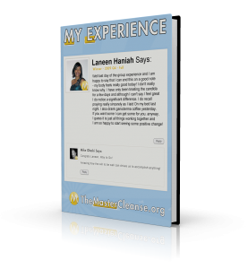 My-Experience-Covers-Laneen-Haniah-3d