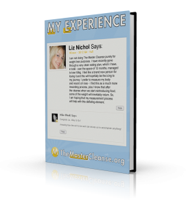 My-Experience-Covers-Liz-Nichol-3d
