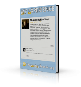 My-Experience-Covers-Melissa-Maltby-3d