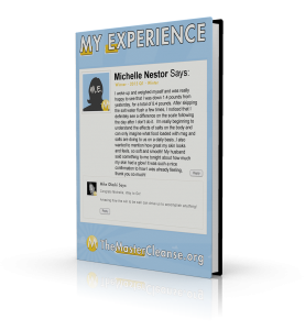 My-Experience-Covers-Michelle-Nestor-3d