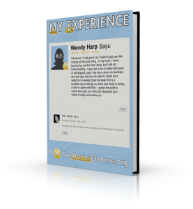 My-Experience-Covers-Wendy-Harp-3d