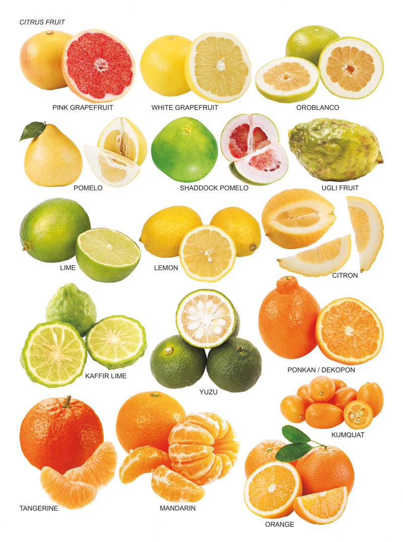 citrus-fruit-chart
