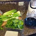 juice-fast-005